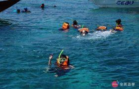 《English Fella 語言學校》週末活動,Nalusuan Island 跳島浮潛