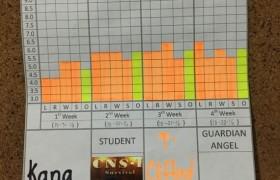 021-CNS 2 碧瑤學校,學生雅思 IELTS 模擬考成績
