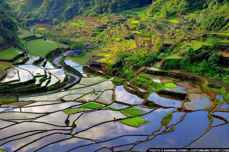 碧瑤東北邊的巴拿威梯田,在1995年登錄為世界文化遺產 The Banaue Rice Terraces