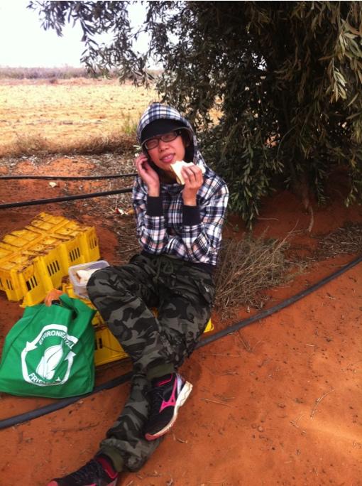 澳洲打工度假+菲律賓遊學達人彎彎_採花椰菜