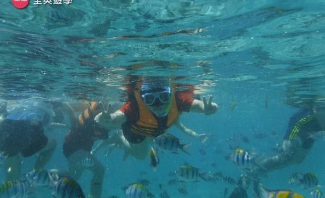宿霧跳島旅遊圖文實況轉播&7大浮潛注意事項!看完這篇心都飛了~全英菲律賓遊學團假日精彩行程~超嗨森