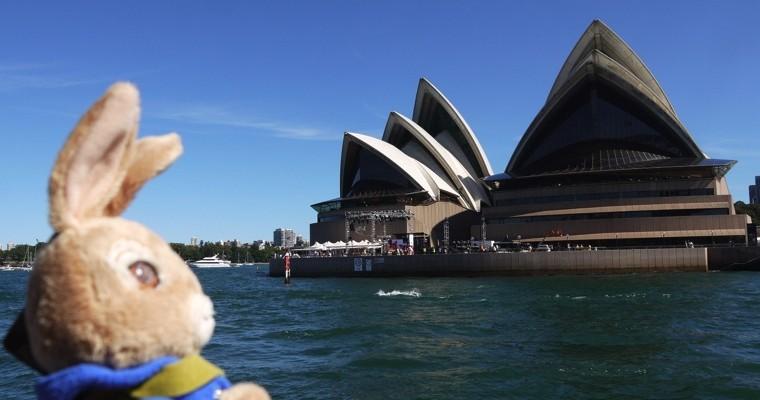 ▲一隻兔兔環澳去,搭渡輪途中欣賞雪梨歌劇院,等等要去 曼利海灘 Manly Beach 海邊曬太陽~