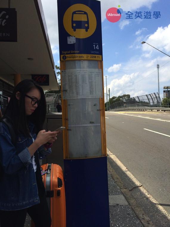 ▲ 雪梨公車站牌,上有公車時刻表