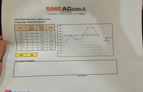 SMEAG-宿霧學校-多益托福校區-小江多益模擬考試成績